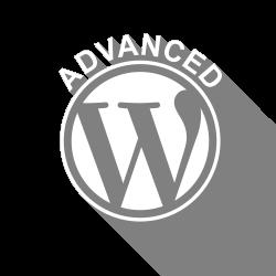Icona del corso Corso WordPress Avanzato