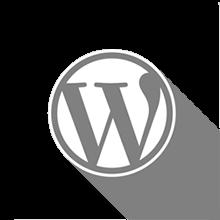 Banner promozionale del Corso WordPress per Web Designer
