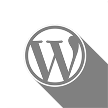 Icona del corso Corso WordPress
